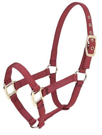 Equi-Web Nylon Young Horse / Pony Halter