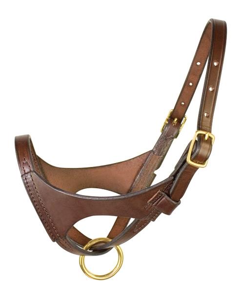 Perri's Premium Leather Foal Halter