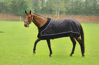 Equine Couture Spinnaker Suede Sheet