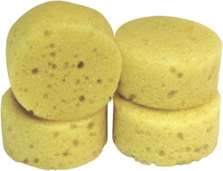 Hadera Sponge Package