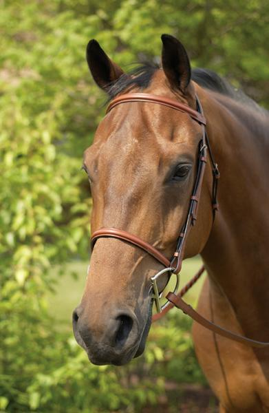 Henri de Rivel Advantage Flat Laced Reins