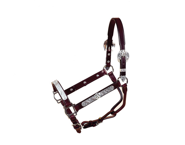 "Tory Leather 1"" Show Halter, TX Star Plate with Lead"