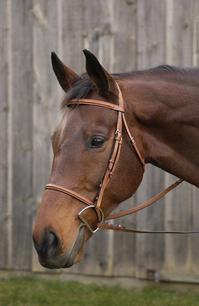 Henri de Rivel Plain Raised Bridle With Laced Reins Pro Collection