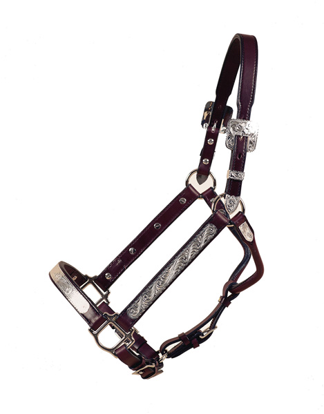 TORY LEATHER Deluxe Straight Cheek Show Halter - Oklahoma Plates