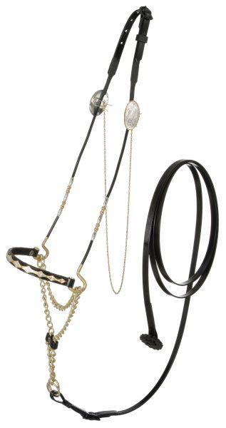Royal King Scalloped Nose Arabian Show Halter