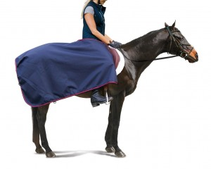 Centaur 600D Waterproof/Breathable Exercise Sheet