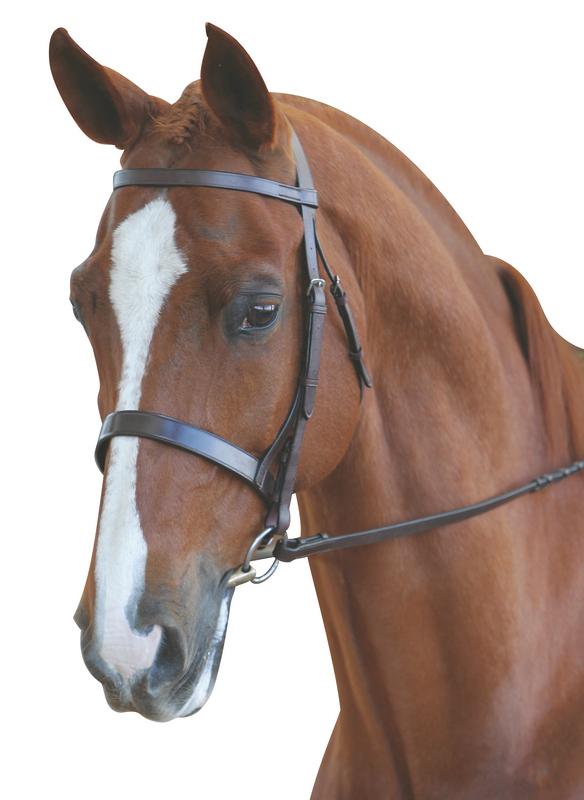 Kincade Padded Headpiece Flash Bridle