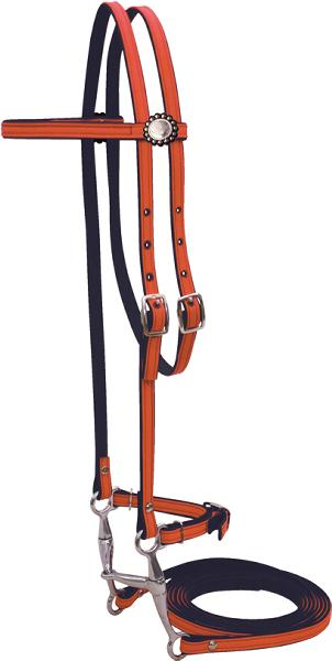 Abetta Cordura Bridle with Spotted Rosette