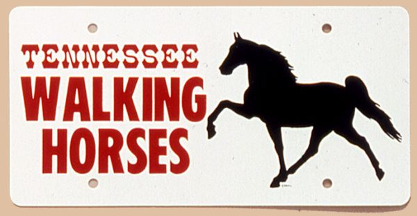 Tn Walk Horse Plastic License Plate