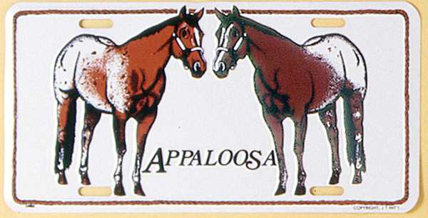 Gift Corral Aluminum License Plate - Appaloosa