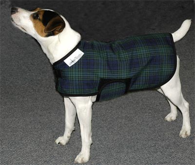 Saratoga Horseworks Canine Winter Dog Coat