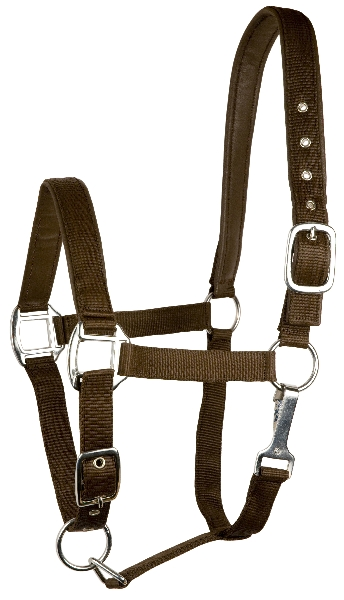 Gatsby Nylon Halter with Split Leather Padding