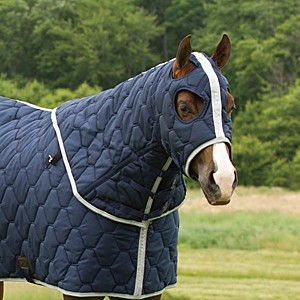 Big D Horse Hood Quilted All American Winter