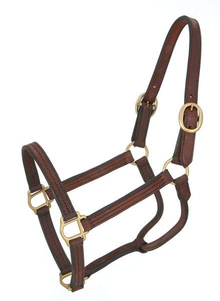 Royal King Large Horse Track Halter