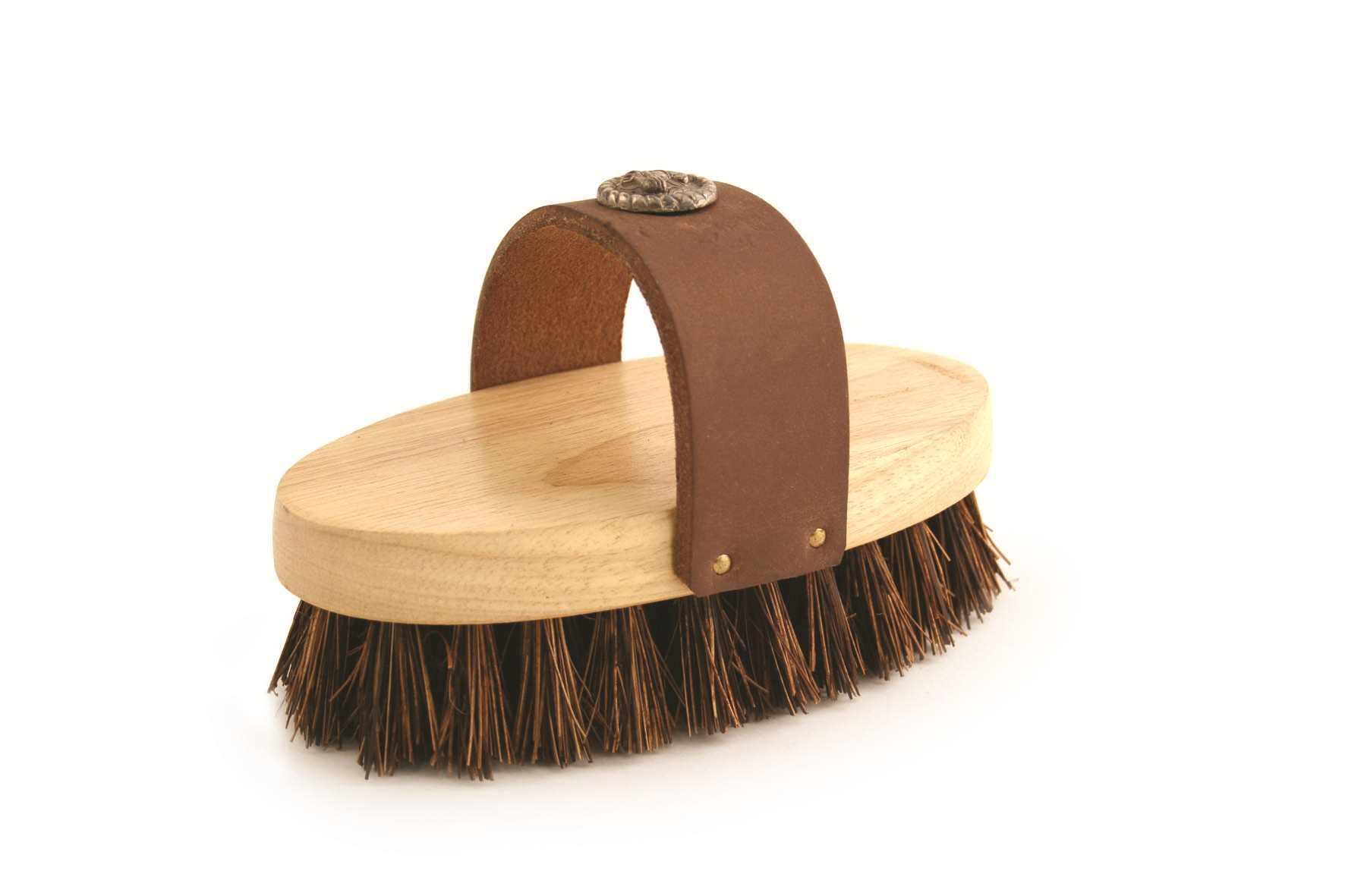 Ponyexpress Rider Western Grooming Brush