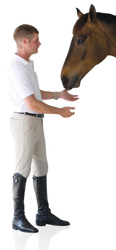 Ovation ULTRA DX Men's Knee Patch Breech