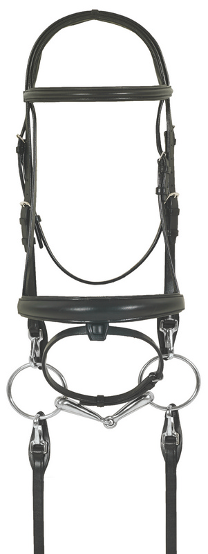 Ovation Europa Schooling Dressage Bridle