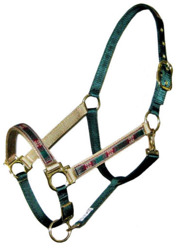 Ronmar Nylon Halter with Snap - Leather Crown/Double Buckle - Green Dynasty