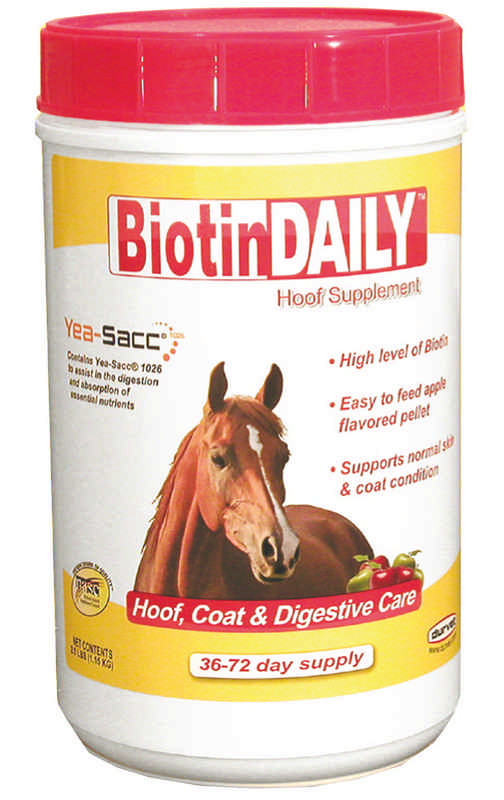 Biotin Crumbles Hoof Care Supplement