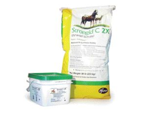 Strongid C2X Equine Anthelmintic