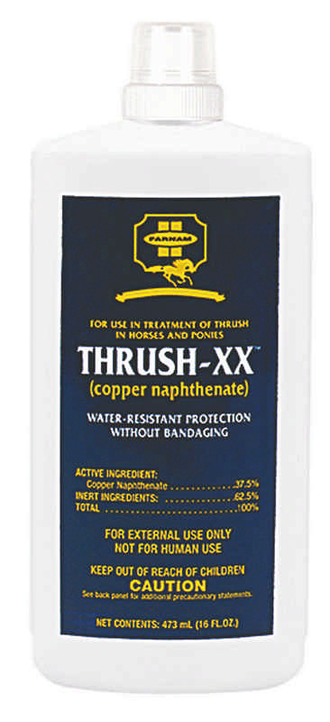 Thrush-XX Equine Hoof Care