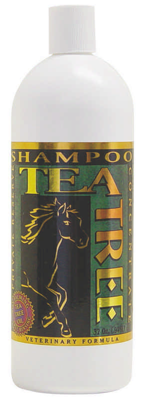 Healing Tree Tea Tree Shampoo