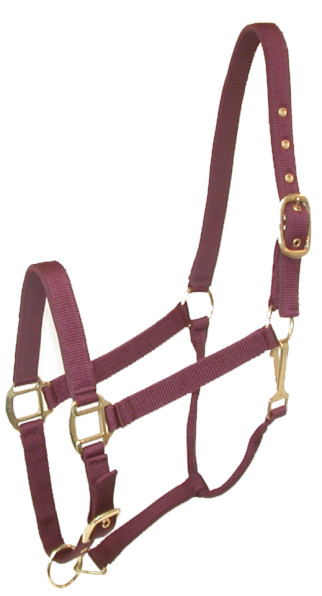 Gatsby Padded Nylon Halter with Snap