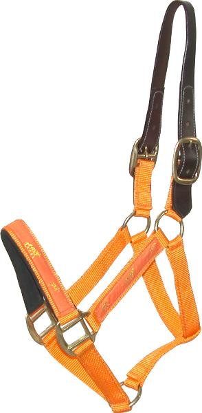 Gatsby Nylon Breakaway Halter with Horse Overlay without Snap