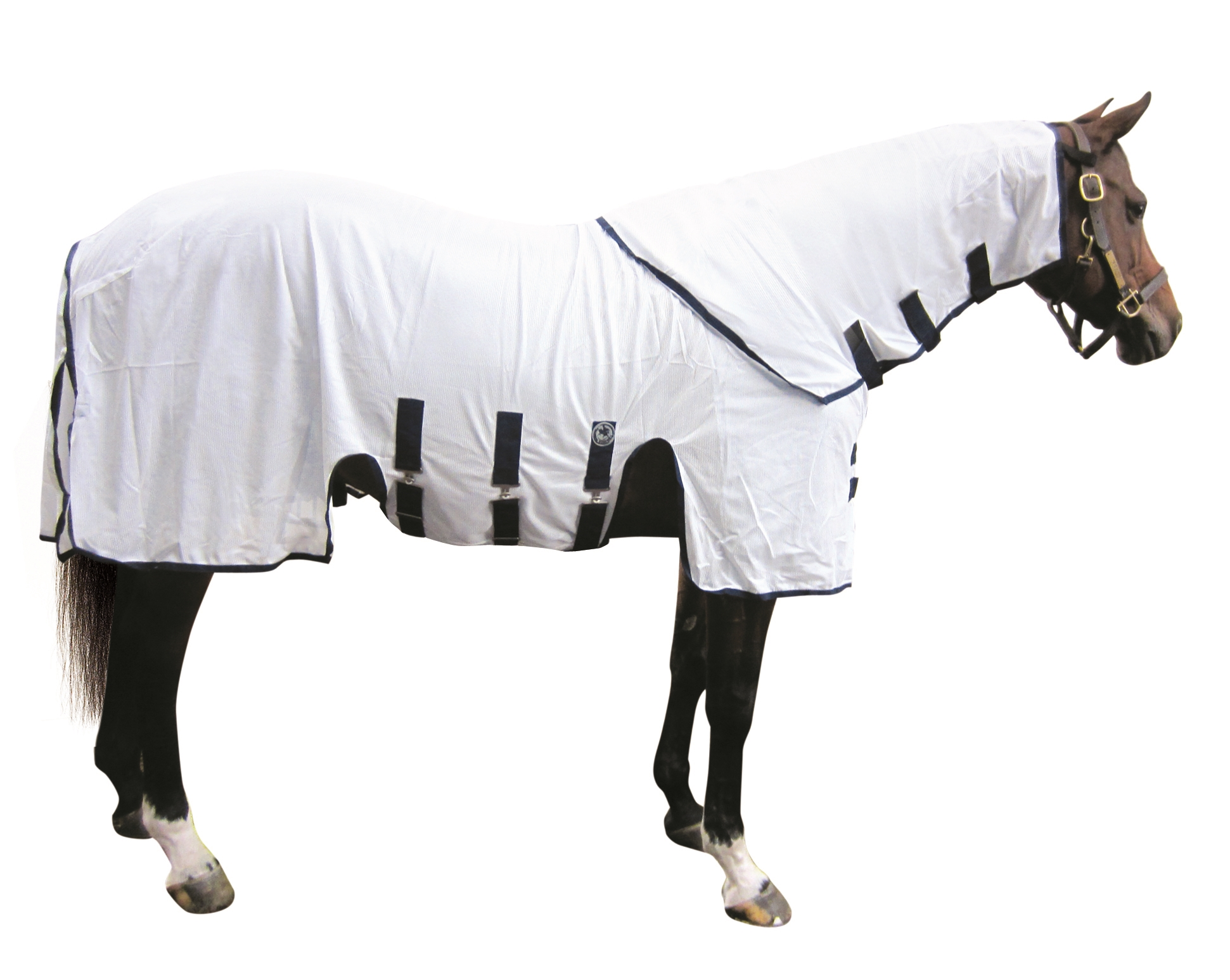 Centaur Pro Fly Sheet with Hood