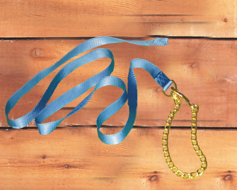 Hamilton Nylon Horse Lead With Chain And Snap