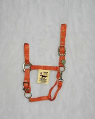 Hamilton Adjustable Halter with Snap