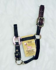 Hamilton Adjustable Halter With Leather Headpoll For Foals
