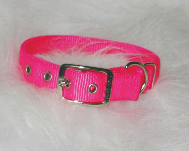Double Nylon Dog Collar