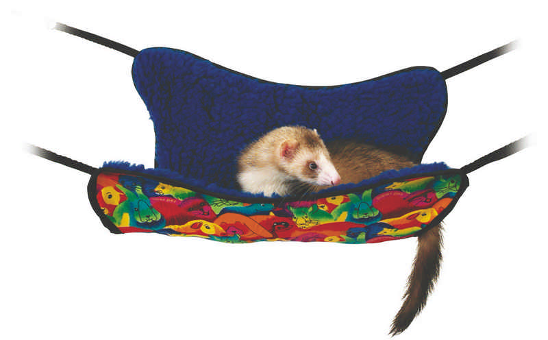 Ferret Hammock With Liner