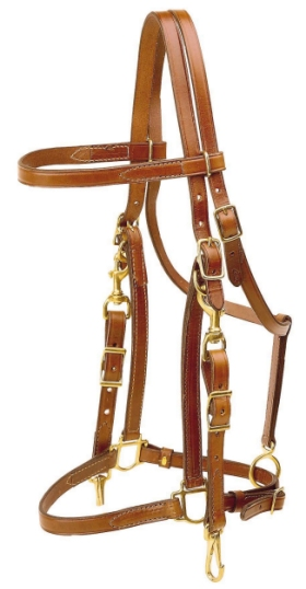 TORY LEATHER Cob Halter/Bridle Combination Trail Bridle - Brass Hardware