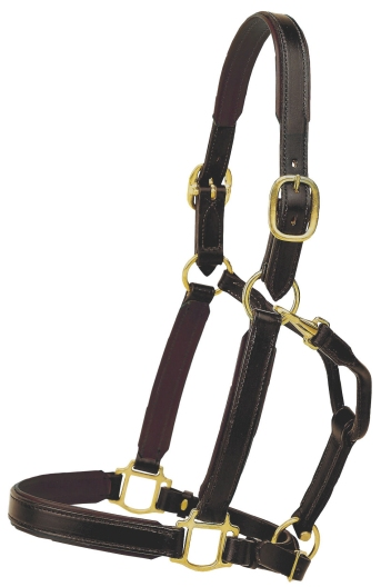 "TORY LEATHER Bridle Leather 1"" Padded Halter"