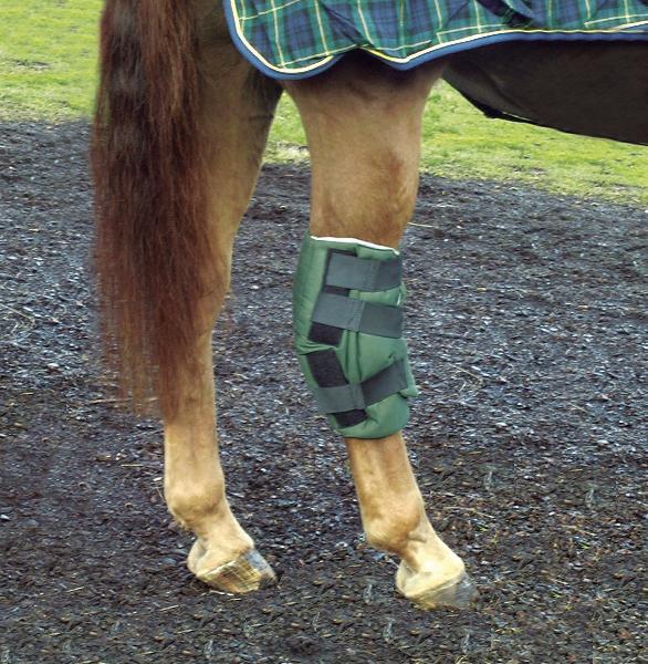 CASHEL Boomer's Hock Sock