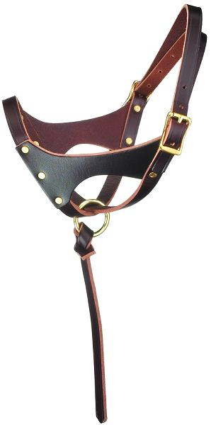 "Perri's ""Grow With Me"" Leather Foal Halter"