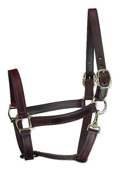 Perri's Track Style Leather Turnout Halter With Snap