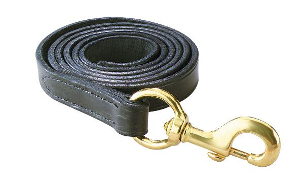 Perri's Leather Lead With Snap
