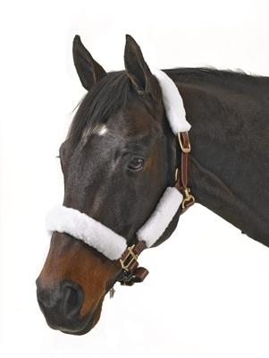 Centaur Fleece Halter Tube Kit w-hook & loop fastener