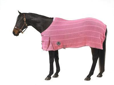 Centaur Basics Irish Knit Dress Sheet