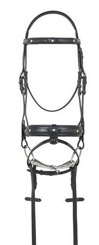 Ovation Dressage Bridle Bling