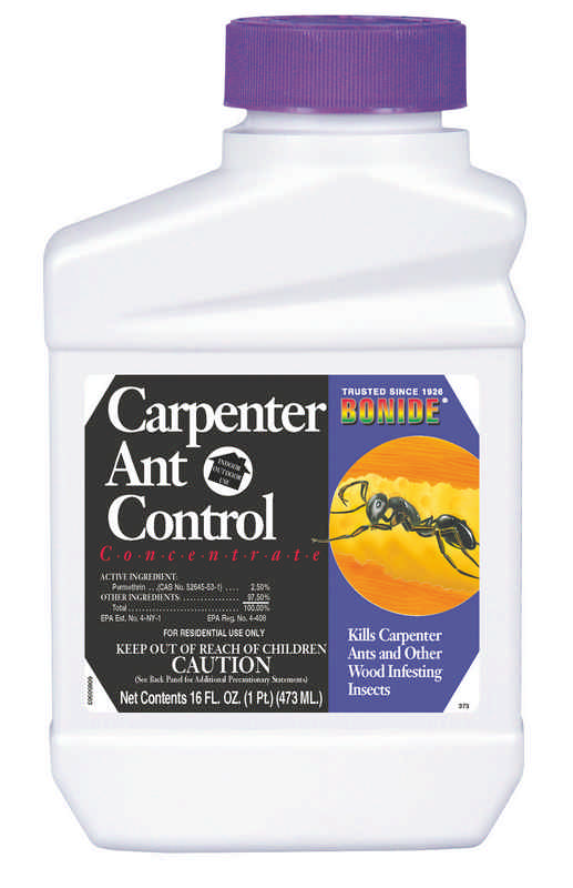 Carpenter Ant Control Concentrate