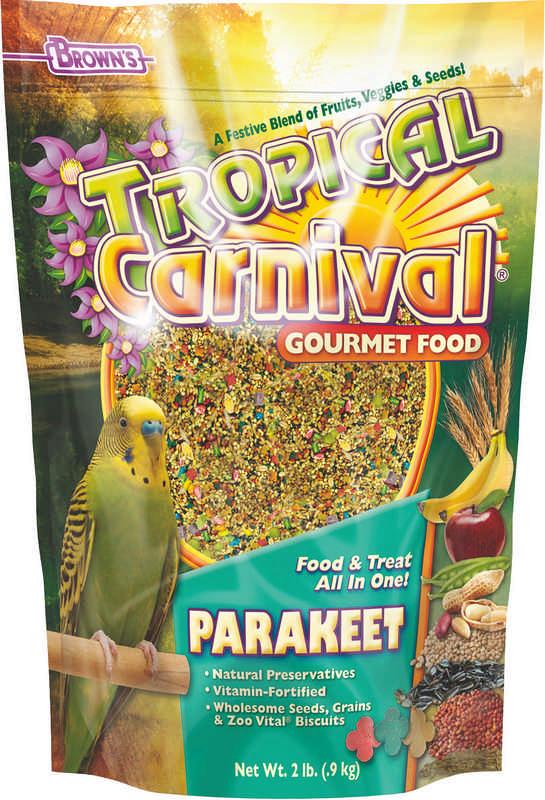 Parakeet Tropical Carnival Food
