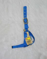 Cow Turn Out Halter