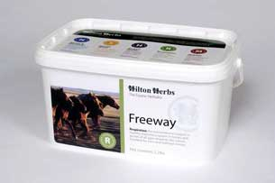 Freeway for horses