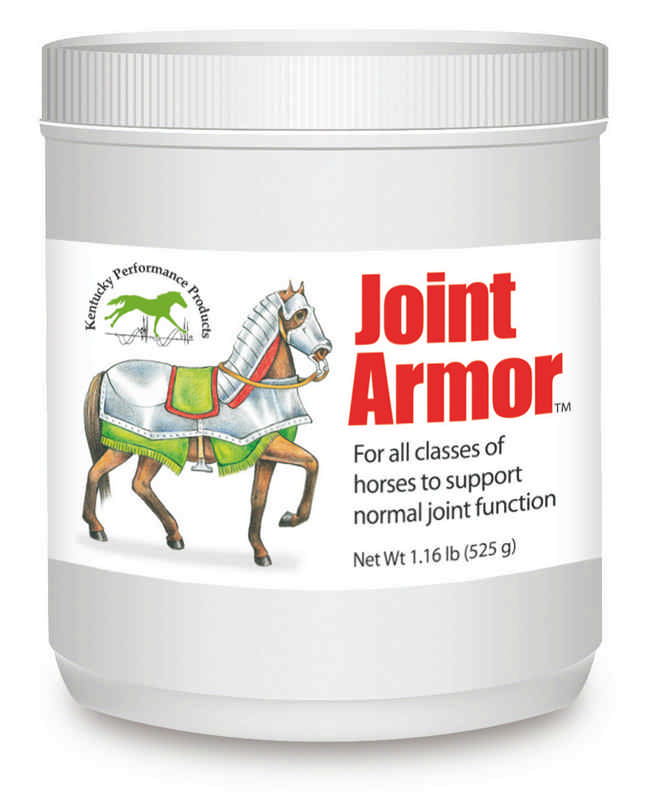 Joint Armor for horses