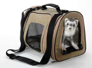 Designer Pet Tote