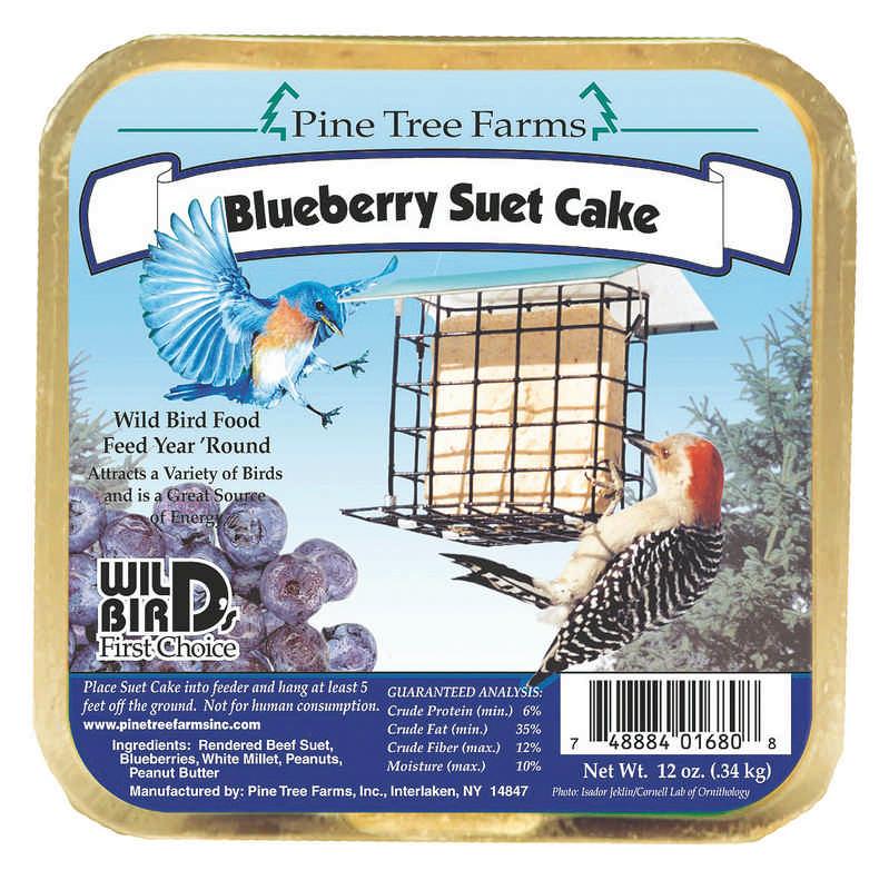 Blueberry Suet Cake